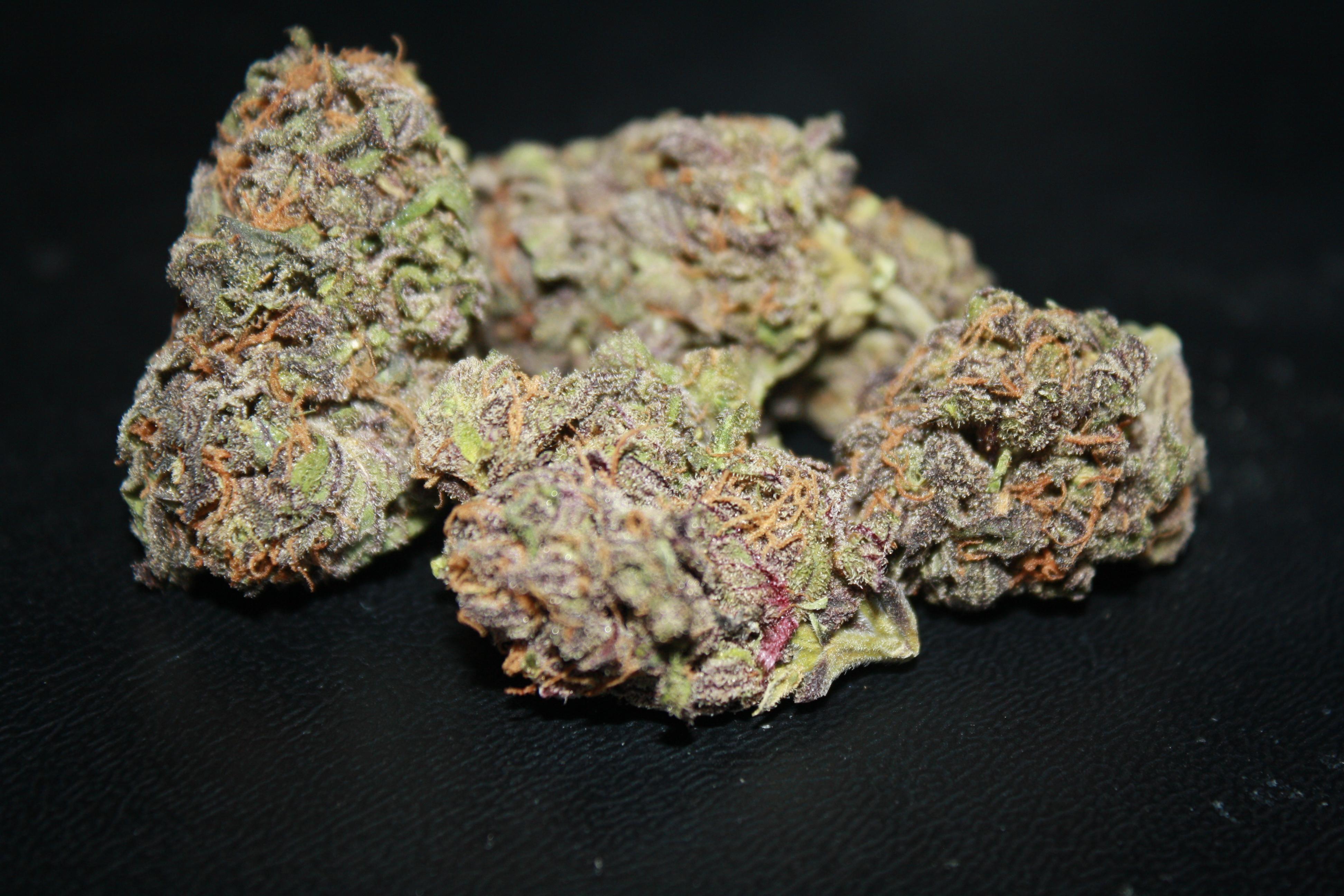 Purple Gorilla Weed is The Purple Gorilla